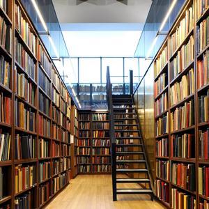 Библиотеки Михнево